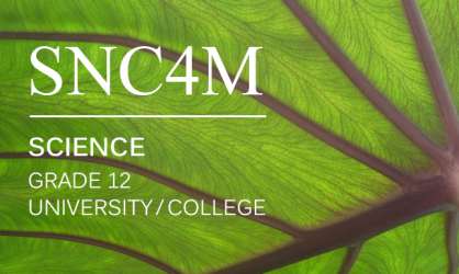 Course-Launch-SNC4M